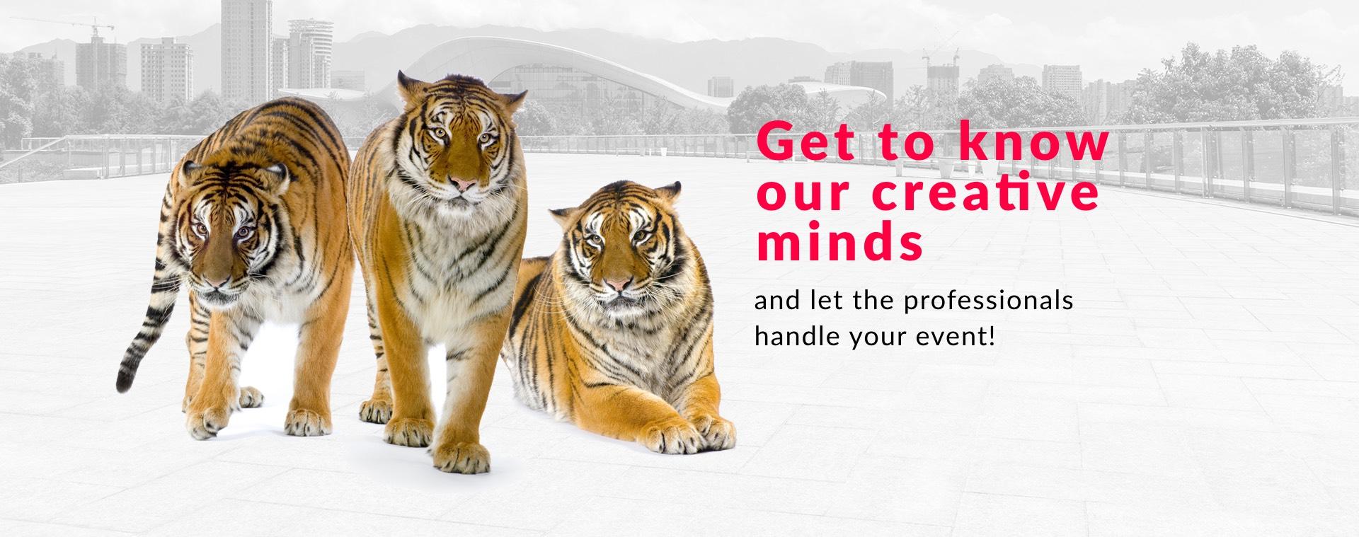 Poznaj nasze kreatywne umysły, złóż swoje wydarzenie w ręce profesjonalistów!